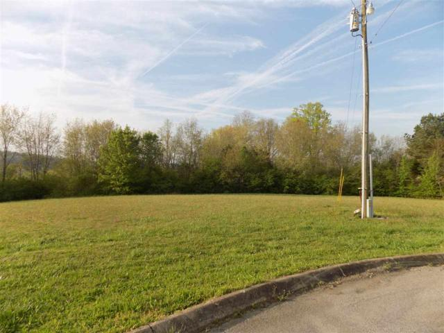 Lot #42 Highland Drive, Madisonville, TN 37354 (#20182029) :: Billy Houston Group