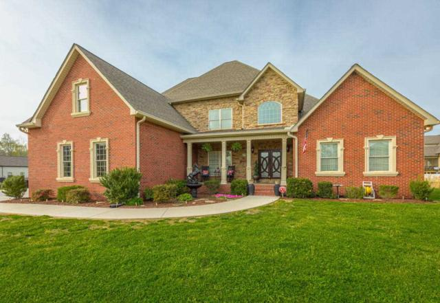 7795 Trout Lily Drive, Ooltewah, TN 37363 (MLS #20182260) :: The Mark Hite Team