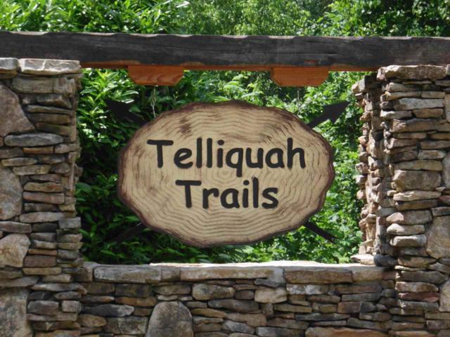 Bullet Mountain, Tellico Plains, TN 37385 (#20182334) :: Billy Houston Group