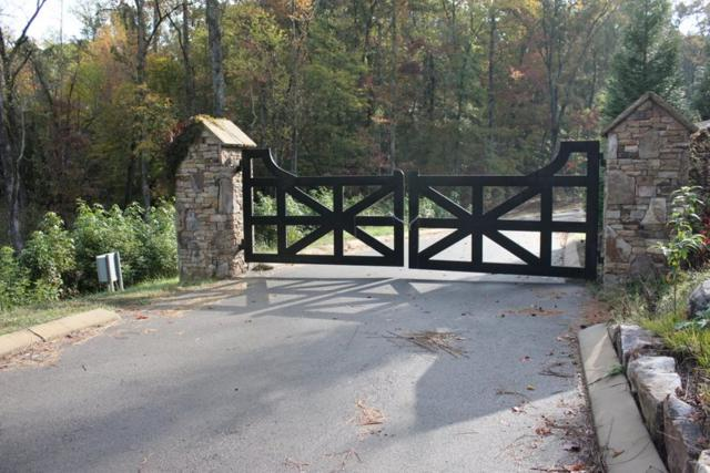 lot #69 Rivermyst Drive, Spring City, TN 37381 (#20182354) :: Billy Houston Group
