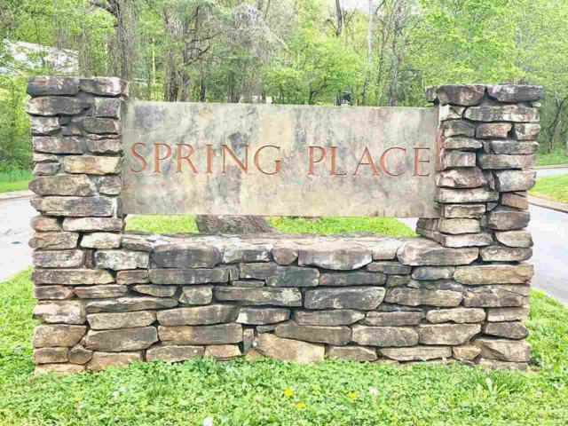 32.18 Ac Spring Place Blvd, Athens, TN 37303 (#20182380) :: Billy Houston Group