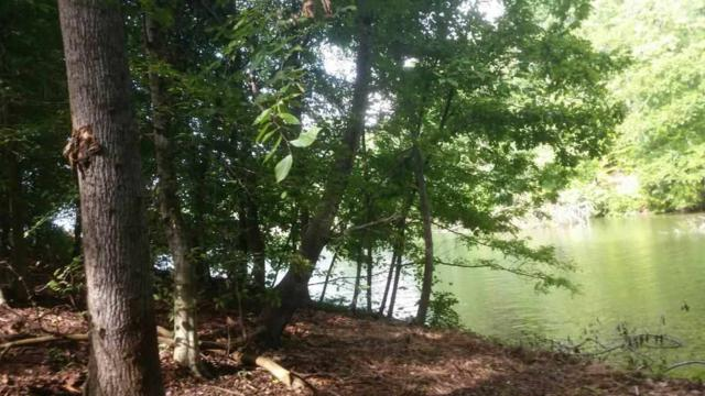 Lot 32 Cherokee, Ten Mile, TN 37880 (#20183167) :: Billy Houston Group