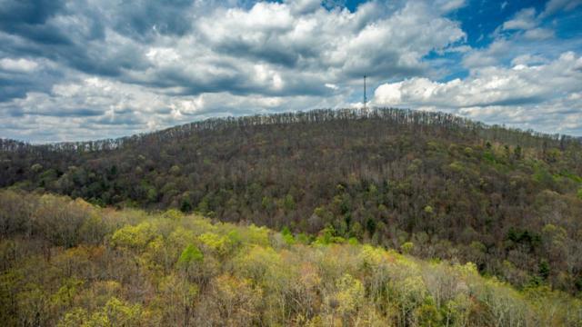 Lot 10 Green Ridge Trail, Harriman, TN 37748 (#20183345) :: Billy Houston Group