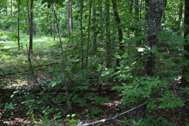 Lot 55 County Road 153, Riceville, TN 37370 (#20183506) :: Billy Houston Group