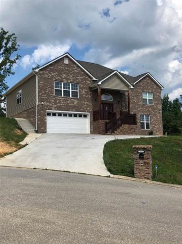 119 Nicole Drive, Dayton, TN 37321 (#20183571) :: Billy Houston Group