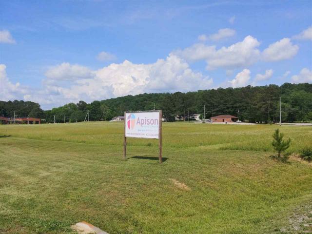 0 Park Place, Apison, TN 37302 (MLS #20183828) :: The Edrington Team