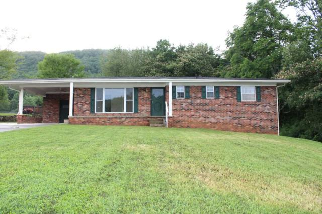340 Pine Street, Spring City, TN 37381 (MLS #20183903) :: The Edrington Team