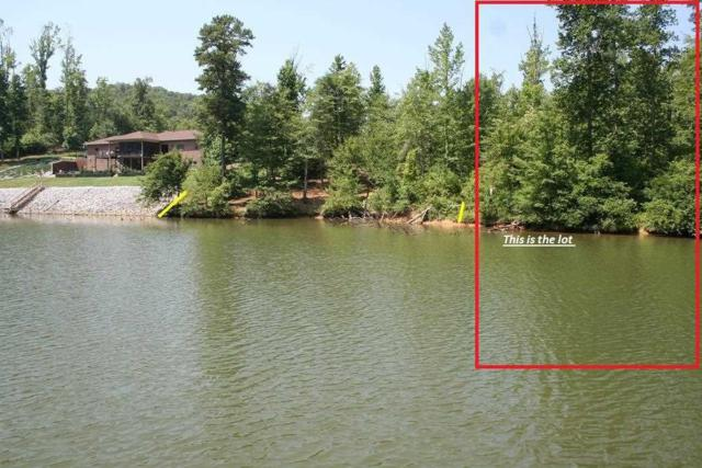 Lot 88 Mariners Cove, Rockwood, TN 37854 (#20184546) :: Billy Houston Group