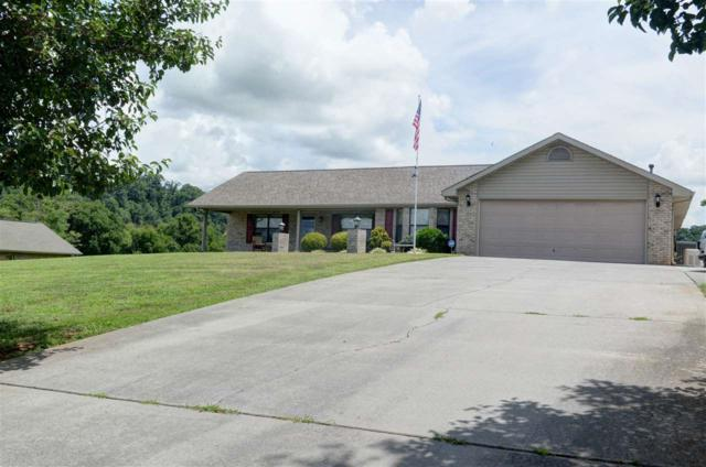 1439 River Run Circle, Sevierville, TN 37876 (MLS #20184665) :: The Mark Hite Team