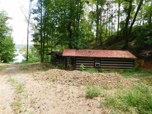 Lot 197 Maple Court, Spring City, TN 37381 (#20184760) :: Billy Houston Group