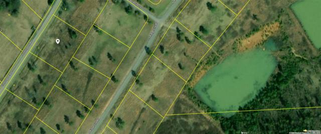 Lot#7 Cottonport Road, Decatur, TN 37322 (#20185169) :: Billy Houston Group