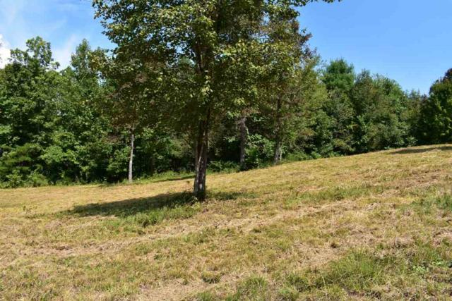 Lot #8 Smoke Rise Cove, Spring City, TN 37381 (#20185497) :: Billy Houston Group