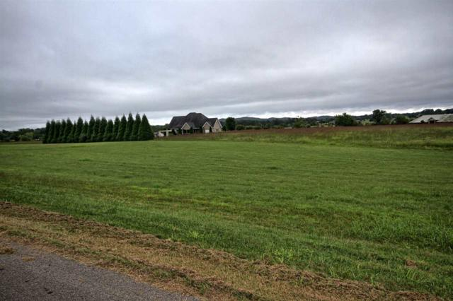 653 Fisher Road, Dayton, TN 37321 (#20185544) :: Billy Houston Group