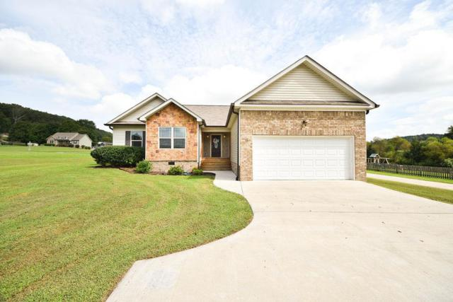 131 Hall Norwood Road, Cleveland, TN 37311 (MLS #20185581) :: The Mark Hite Team
