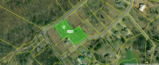 Stump Hollow Road, Spring City, TN 37854 (#20185847) :: Billy Houston Group