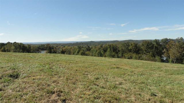 Lot 50 Mill Drive, Decatur, TN 37322 (#20186241) :: Billy Houston Group