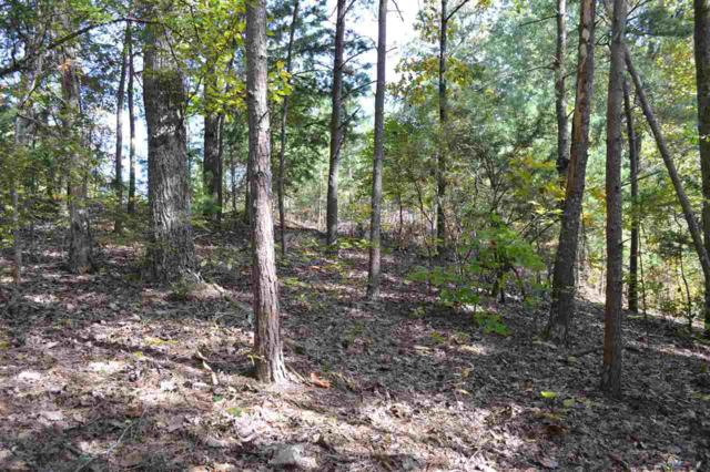 Lot 47 &48 Mcclanahan NW, Cleveland, TN 37312 (MLS #20186478) :: The Jooma Team