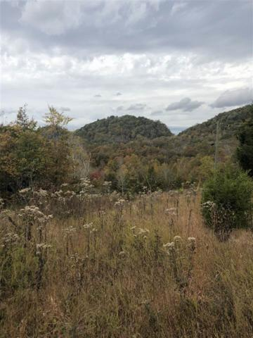 Lot 3 Lick Creek, Tellico Plains, TN 37385 (#20186533) :: Billy Houston Group