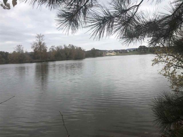 000 Riverbend Dr, Dayton, TN 37321 (MLS #20186636) :: The Mark Hite Team