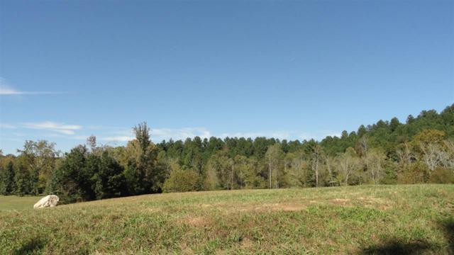 Lots 5, 50 Mill Drive, Decatur, TN 37322 (#20186893) :: Billy Houston Group