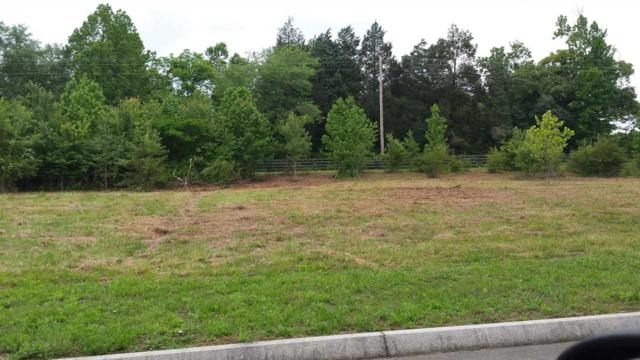 Lot 80 Creekside Dr, Harriman, TN 37748 (#20187014) :: Billy Houston Group