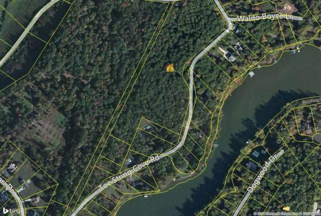 15.6 Acres Toestring Cove Road, Spring City, TN 37381 (MLS #20187410) :: Austin Sizemore Team