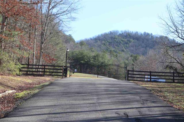 Lot 24 The Highlands, Tellico Plains, TN 37385 (MLS #20190135) :: The Jooma Team