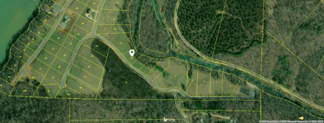 Lot 10 Mill Drive, Decatur, TN 37322 (#20190287) :: Billy Houston Group