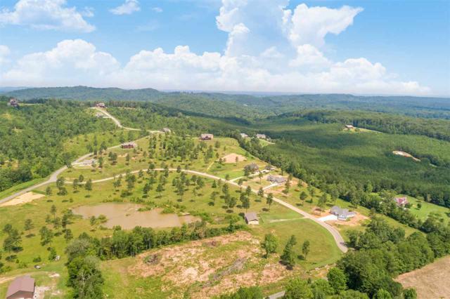 Lot 6 Ocoee Ridge Subdivision, Ocoee, TN 37361 (#20190706) :: Billy Houston Group