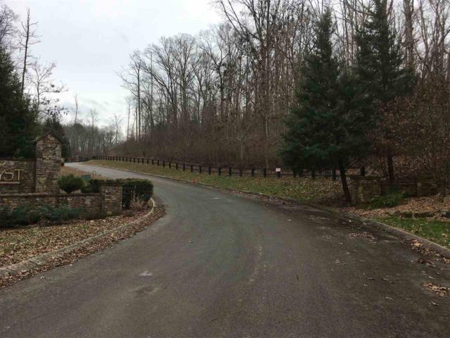 lot 10 Hidden Forest Trail, Spring City, TN 37381 (#20190862) :: Billy Houston Group