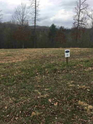 lot 11 Hidden Forest Trail, Spring City, TN 37381 (#20190863) :: Billy Houston Group