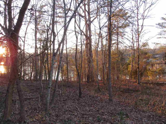 Lot #24 Debbie Drive, Spring City, TN 37381 (#20190965) :: Billy Houston Group