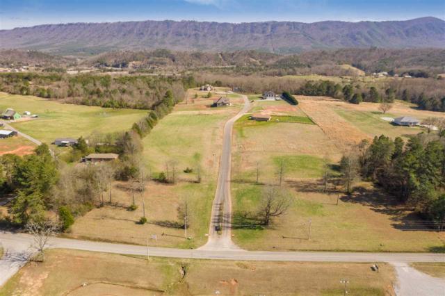 Lot 1 Mountain Meadows Subdivision, Benton, TN 37307 (MLS #20191146) :: The Mark Hite Team