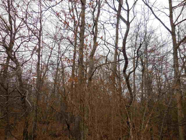 Lot 21 Bear Den, Crossville, TN 38571 (MLS #20191284) :: The Edrington Team