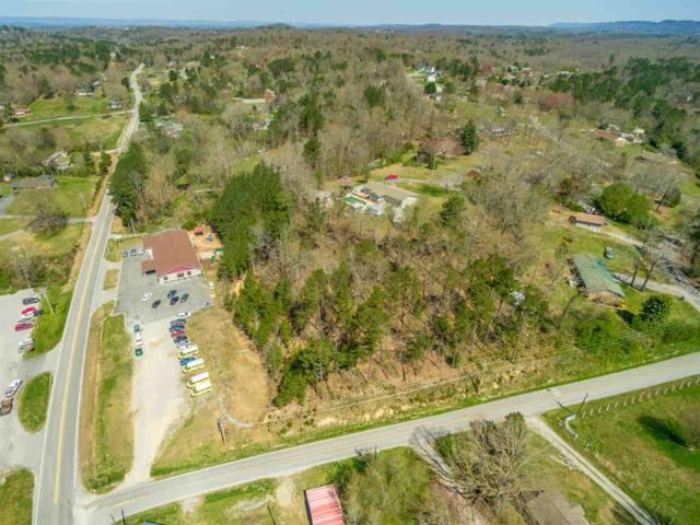 0 Chapman Road, Ringgold, TN 30736 (MLS #20191684) :: The Edrington Team