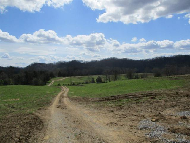 115.57 Acres Tilley Rd, Madisonville, TN 37354 (#20191750) :: Billy Houston Group