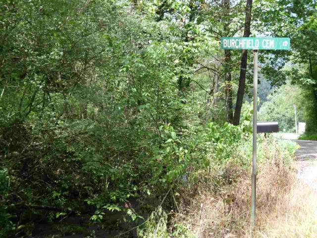 150 Burchfield Cemetery, Reliance, TN 37369 (MLS #20191837) :: The Edrington Team