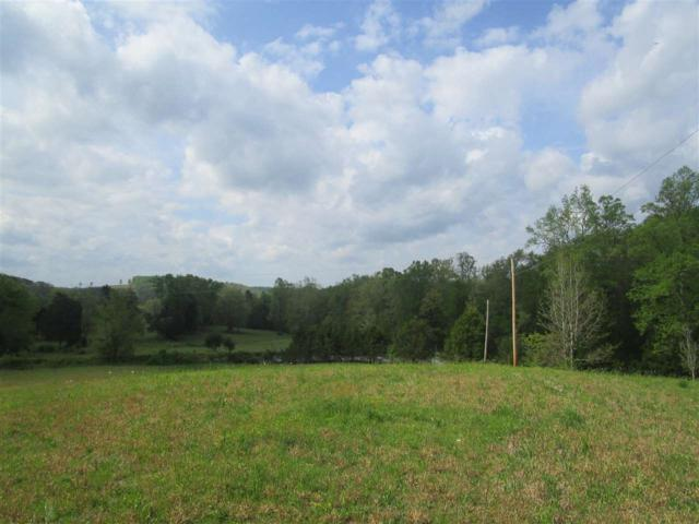000 N. No Pone Valley Road N, Decatur, TN 37322 (#20192148) :: Billy Houston Group