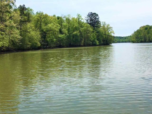 Lot 5 County Road 8, Calhoun, TN 37309 (MLS #20192211) :: The Edrington Team