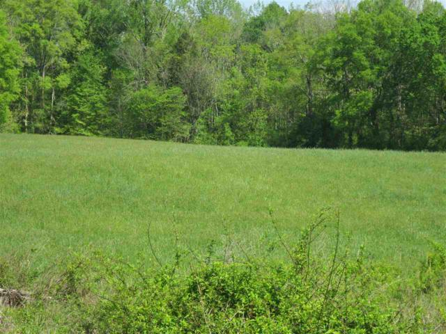 Lot 7 No Pone Valley Road N, Decatur, TN 37322 (MLS #20192282) :: The Mark Hite Team