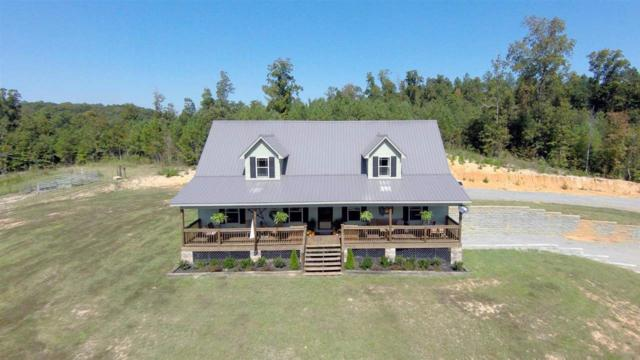 2440 County Road 750, Calhoun, TN 37309 (MLS #20192586) :: The Mark Hite Team