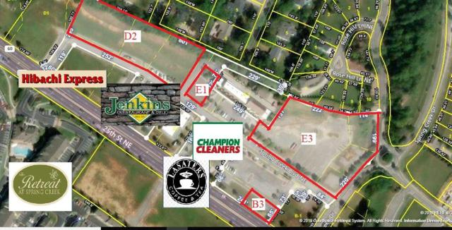 E1 Spring Creek Boulevard Ne NE, Cleveland, TN 37311 (#20192928) :: Billy Houston Group