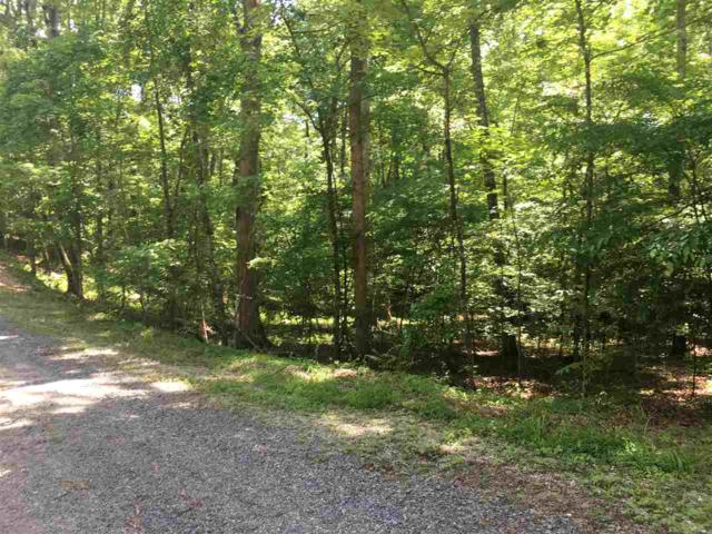 Lot #397 Fawnwood Drive, Spring City, TN 37381 (MLS #20192987) :: The Mark Hite Team