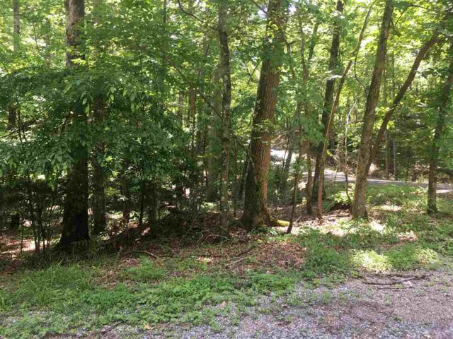 Lot #398 Fawnwood Dr, Spring City, TN 37381 (MLS #20192988) :: The Mark Hite Team