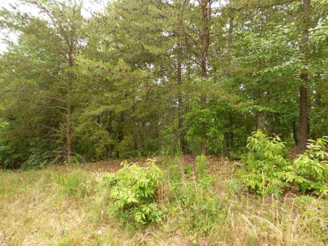 Lot 451 Crystal Springs Road, Rockwood, TN 37854 (MLS #20193352) :: The Edrington Team