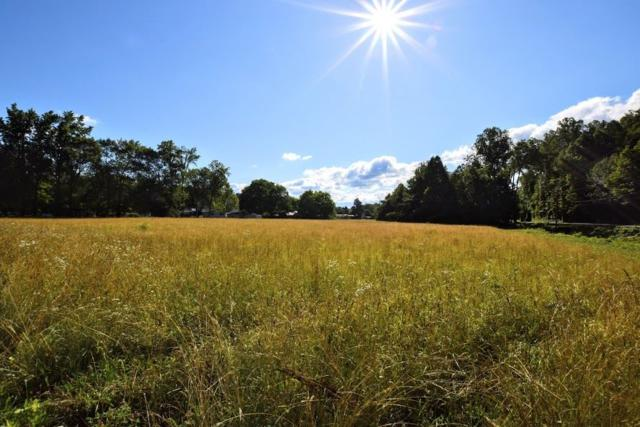 4.4 ac Ideal Valley, Spring City, TN 37381 (#20193420) :: Billy Houston Group