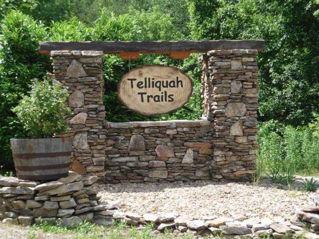 Lot 37 Bullet Mountain, Tellico Plains, TN 37385 (MLS #20193568) :: The Edrington Team