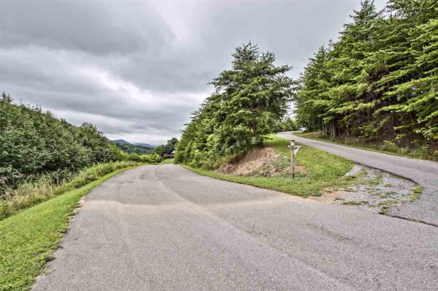 Lot 15A Highlands Bluff, Tellico Plains, TN 37385 (#20194151) :: Billy Houston Group
