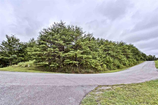 Lot 15B Highlands Bluff, Tellico Plains, TN 37385 (#20194155) :: Billy Houston Group