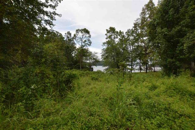 parcel 30 Amy Trail, Spring City, TN 37381 (MLS #20194249) :: The Jooma Team